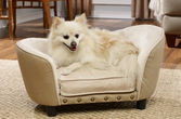 Kattsoffa club chair beige